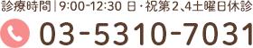 03-5310-7031